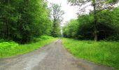 Randonnée Marche SAINT-JEAN-AUX-BOIS - en forêt de Compiègne_2_ruines gallo-romaines de Champlieu_les Petits Monts - Photo 246