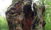 Randonnée Marche SAINT-JEAN-AUX-BOIS - en forêt de Compiègne_2_ruines gallo-romaines de Champlieu_les Petits Monts - Photo 265