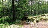 Randonnée Marche SAINT-JEAN-AUX-BOIS - en forêt de Compiègne_2_ruines gallo-romaines de Champlieu_les Petits Monts - Photo 148
