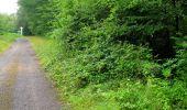 Randonnée Marche SAINT-JEAN-AUX-BOIS - en forêt de Compiègne_2_ruines gallo-romaines de Champlieu_les Petits Monts - Photo 242