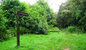 Randonnée Marche SAINT-JEAN-AUX-BOIS - en forêt de Compiègne_2_ruines gallo-romaines de Champlieu_les Petits Monts - Photo 268