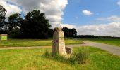 Randonnée Marche SAINT-JEAN-AUX-BOIS - en forêt de Compiègne_2_ruines gallo-romaines de Champlieu_les Petits Monts - Photo 90