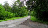 Randonnée Marche SAINT-JEAN-AUX-BOIS - en forêt de Compiègne_2_ruines gallo-romaines de Champlieu_les Petits Monts - Photo 240