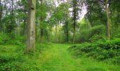 Trail Walk SAINT-JEAN-AUX-BOIS - en forêt de Compiègne_33_12_2019_les Tournantes de l'étang Saint-Jean et des Prés Saint-Jean - Photo 189