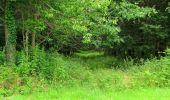 Randonnée Marche SAINT-JEAN-AUX-BOIS - en forêt de Compiègne_2_ruines gallo-romaines de Champlieu_les Petits Monts - Photo 63