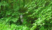 Randonnée Marche SAINT-JEAN-AUX-BOIS - en forêt de Compiègne_2_ruines gallo-romaines de Champlieu_les Petits Monts - Photo 236