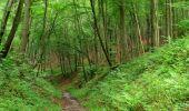Randonnée Marche SAINT-JEAN-AUX-BOIS - en forêt de Compiègne_2_ruines gallo-romaines de Champlieu_les Petits Monts - Photo 122