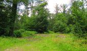 Randonnée Marche SAINT-JEAN-AUX-BOIS - en forêt de Compiègne_2_ruines gallo-romaines de Champlieu_les Petits Monts - Photo 174