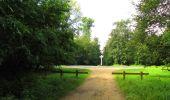 Randonnée Marche SAINT-JEAN-AUX-BOIS - en forêt de Compiègne_2_ruines gallo-romaines de Champlieu_les Petits Monts - Photo 209