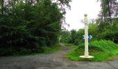 Randonnée Marche SAINT-JEAN-AUX-BOIS - en forêt de Compiègne_2_ruines gallo-romaines de Champlieu_les Petits Monts - Photo 241