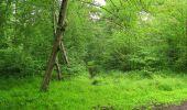 Randonnée Marche SAINT-JEAN-AUX-BOIS - en forêt de Compiègne_2_ruines gallo-romaines de Champlieu_les Petits Monts - Photo 233