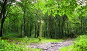 Randonnée Marche SAINT-JEAN-AUX-BOIS - en forêt de Compiègne_2_ruines gallo-romaines de Champlieu_les Petits Monts - Photo 104