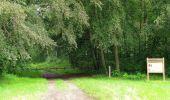 Randonnée Marche SAINT-JEAN-AUX-BOIS - en forêt de Compiègne_2_ruines gallo-romaines de Champlieu_les Petits Monts - Photo 214