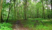 Randonnée Marche SAINT-JEAN-AUX-BOIS - en forêt de Compiègne_2_ruines gallo-romaines de Champlieu_les Petits Monts - Photo 103