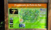 Randonnée Marche SAINT-JEAN-AUX-BOIS - en forêt de Compiègne_2_ruines gallo-romaines de Champlieu_les Petits Monts - Photo 215
