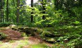 Randonnée Marche SAINT-JEAN-AUX-BOIS - en forêt de Compiègne_2_ruines gallo-romaines de Champlieu_les Petits Monts - Photo 147
