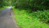 Randonnée Marche SAINT-JEAN-AUX-BOIS - en forêt de Compiègne_2_ruines gallo-romaines de Champlieu_les Petits Monts - Photo 234