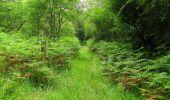 Randonnée Marche SAINT-JEAN-AUX-BOIS - en forêt de Compiègne_2_ruines gallo-romaines de Champlieu_les Petits Monts - Photo 16