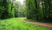 Randonnée Marche SAINT-JEAN-AUX-BOIS - en forêt de Compiègne_2_ruines gallo-romaines de Champlieu_les Petits Monts - Photo 96