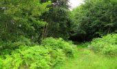 Randonnée Marche SAINT-JEAN-AUX-BOIS - en forêt de Compiègne_2_ruines gallo-romaines de Champlieu_les Petits Monts - Photo 5