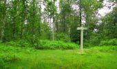 Randonnée Marche SAINT-JEAN-AUX-BOIS - en forêt de Compiègne_2_ruines gallo-romaines de Champlieu_les Petits Monts - Photo 249