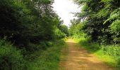 Randonnée Marche SAINT-JEAN-AUX-BOIS - en forêt de Compiègne_2_ruines gallo-romaines de Champlieu_les Petits Monts - Photo 190