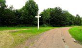 Randonnée Marche SAINT-JEAN-AUX-BOIS - en forêt de Compiègne_2_ruines gallo-romaines de Champlieu_les Petits Monts - Photo 61