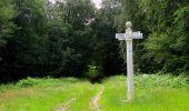 Randonnée Marche SAINT-JEAN-AUX-BOIS - en forêt de Compiègne_2_ruines gallo-romaines de Champlieu_les Petits Monts - Photo 127
