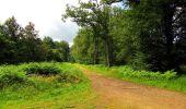 Randonnée Marche SAINT-JEAN-AUX-BOIS - en forêt de Compiègne_2_ruines gallo-romaines de Champlieu_les Petits Monts - Photo 183