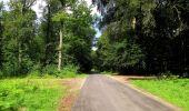 Randonnée Marche SAINT-JEAN-AUX-BOIS - en forêt de Compiègne_2_ruines gallo-romaines de Champlieu_les Petits Monts - Photo 154