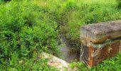 Randonnée Marche SAINT-JEAN-AUX-BOIS - en forêt de Compiègne_2_ruines gallo-romaines de Champlieu_les Petits Monts - Photo 206
