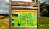 Randonnée Marche SAINT-JEAN-AUX-BOIS - en forêt de Compiègne_2_ruines gallo-romaines de Champlieu_les Petits Monts - Photo 91