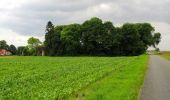 Randonnée Marche SAINT-JEAN-AUX-BOIS - en forêt de Compiègne_2_ruines gallo-romaines de Champlieu_les Petits Monts - Photo 89