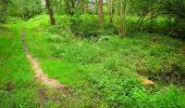 Randonnée Marche SAINT-JEAN-AUX-BOIS - en forêt de Compiègne_2_ruines gallo-romaines de Champlieu_les Petits Monts - Photo 17