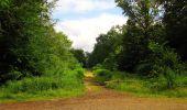 Randonnée Marche SAINT-JEAN-AUX-BOIS - en forêt de Compiègne_2_ruines gallo-romaines de Champlieu_les Petits Monts - Photo 188