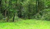 Randonnée Marche SAINT-JEAN-AUX-BOIS - en forêt de Compiègne_2_ruines gallo-romaines de Champlieu_les Petits Monts - Photo 30