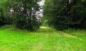 Randonnée Marche SAINT-JEAN-AUX-BOIS - en forêt de Compiègne_2_ruines gallo-romaines de Champlieu_les Petits Monts - Photo 62