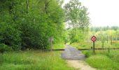 Randonnée Marche SAINT-JEAN-AUX-BOIS - en forêt de Compiègne_2_ruines gallo-romaines de Champlieu_les Petits Monts - Photo 225