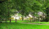 Randonnée Marche SAINT-JEAN-AUX-BOIS - en forêt de Compiègne_2_ruines gallo-romaines de Champlieu_les Petits Monts - Photo 43