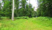 Randonnée Marche SAINT-JEAN-AUX-BOIS - en forêt de Compiègne_2_ruines gallo-romaines de Champlieu_les Petits Monts - Photo 144