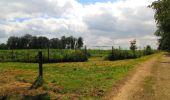 Randonnée Marche SAINT-JEAN-AUX-BOIS - en forêt de Compiègne_2_ruines gallo-romaines de Champlieu_les Petits Monts - Photo 92