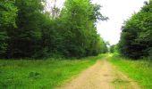 Randonnée Marche SAINT-JEAN-AUX-BOIS - en forêt de Compiègne_2_ruines gallo-romaines de Champlieu_les Petits Monts - Photo 192