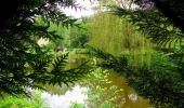 Randonnée Marche SAINT-JEAN-AUX-BOIS - en forêt de Compiègne_2_ruines gallo-romaines de Champlieu_les Petits Monts - Photo 11