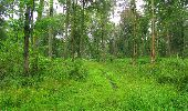 Trail Walk SAINT-JEAN-AUX-BOIS - en forêt de Compiègne_33_12_2019_les Tournantes de l'étang Saint-Jean et des Prés Saint-Jean - Photo 188