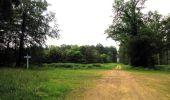 Randonnée Marche SAINT-JEAN-AUX-BOIS - en forêt de Compiègne_2_ruines gallo-romaines de Champlieu_les Petits Monts - Photo 181