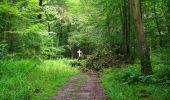 Randonnée Marche SAINT-JEAN-AUX-BOIS - en forêt de Compiègne_2_ruines gallo-romaines de Champlieu_les Petits Monts - Photo 99