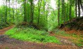 Randonnée Marche SAINT-JEAN-AUX-BOIS - en forêt de Compiègne_2_ruines gallo-romaines de Champlieu_les Petits Monts - Photo 24