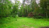 Randonnée Marche SAINT-JEAN-AUX-BOIS - en forêt de Compiègne_2_ruines gallo-romaines de Champlieu_les Petits Monts - Photo 254