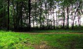 Randonnée Marche SAINT-JEAN-AUX-BOIS - en forêt de Compiègne_2_ruines gallo-romaines de Champlieu_les Petits Monts - Photo 95