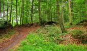 Randonnée Marche SAINT-JEAN-AUX-BOIS - en forêt de Compiègne_2_ruines gallo-romaines de Champlieu_les Petits Monts - Photo 25